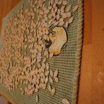 GRaines de citrouillle étendus sur un linge à vaiselle